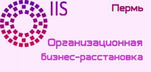 Бизнес расстановка Пермь
