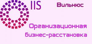 Бизнес расстановка Вильнюс