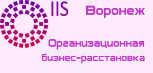 Бизнес расстановка Воронеж